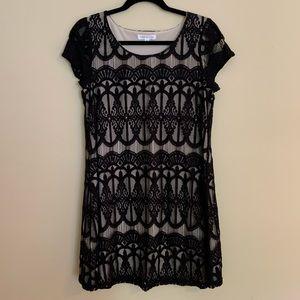 Sociallite Lace Line Shift Dress